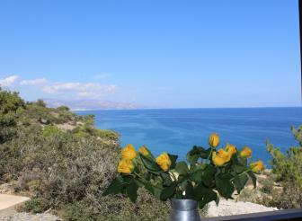 Meerblick Apartment Agia Fotia Dream